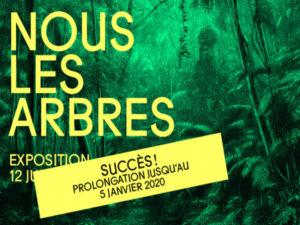 Home-site_Nous-les-arbres_prolongtion